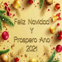 Felices Fiestas y Muchos Ánimos
